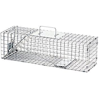 Animal Trap Image